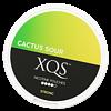 XQS Cactus Sour Slim Stark Nikotinbeutel