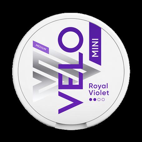 Velo Royal Purple Mini Light