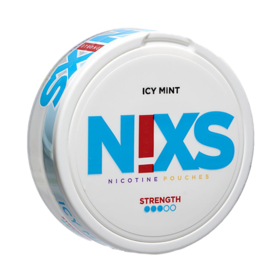N!xs Icy Mint Large Normal